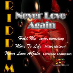 Never Love Again Riddim